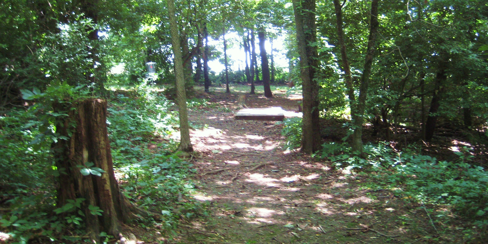 Disc Golf Course Trail 6.JPG