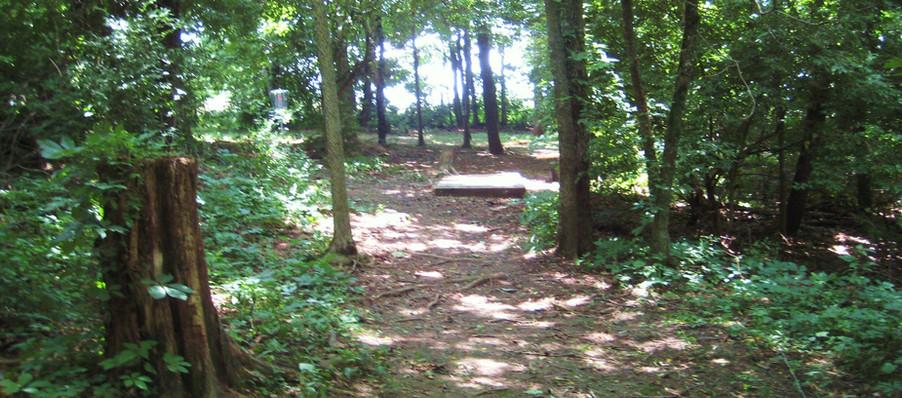 Disc Golf Course Trail 6.JPG