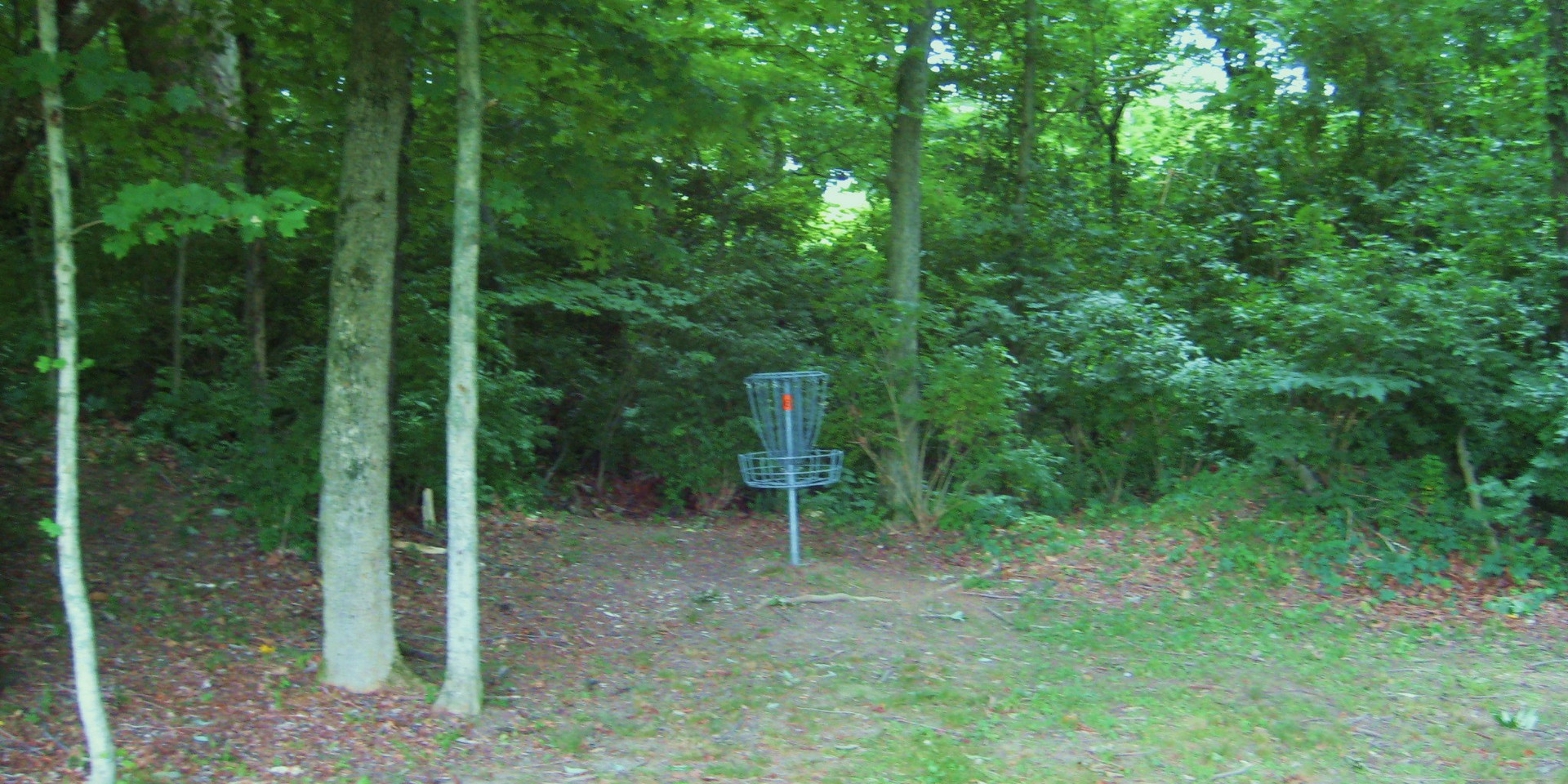 Disc Golf Course Hole 6.JPG