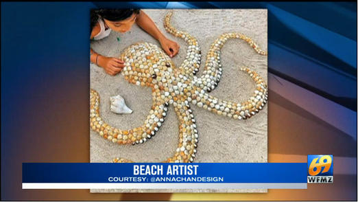 Anna Chan beach artist WFMZ