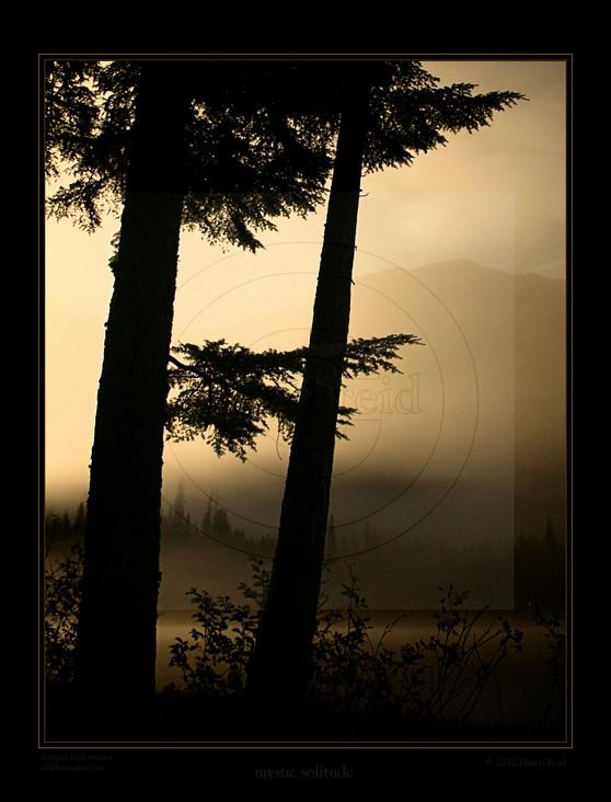 mystic solitude