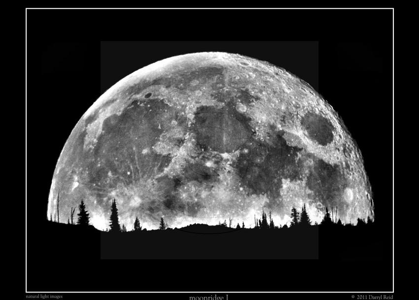 moonridge I