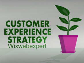 Understand Your Traffic and Clients - Online Business | Wix Web Expert Blogs