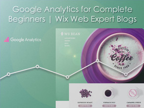 Google Analytics for Complete Beginners | Wix Web Expert Blogs