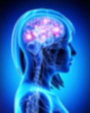 Brain Chemicals.JPG