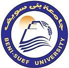 قسم جراحة المسالك البولية والتناسلية، كلية الطب، جامعة بنى سويف