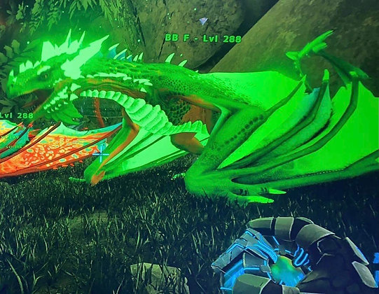 Ember wyve green color lvl 288 ( xbox pvp )