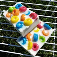 Froot-a-Loop Soap