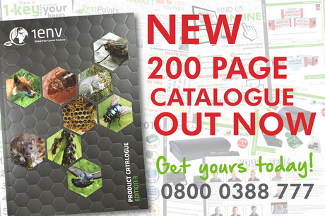 CATALOGUE SOCIAL MEDIA add.jpg