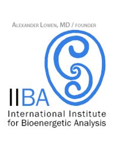logo IIBA.png