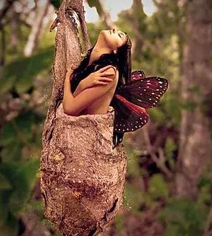 De la chenille au papillon: Changement, transformation, métamorphose, pour un nouveau départ...