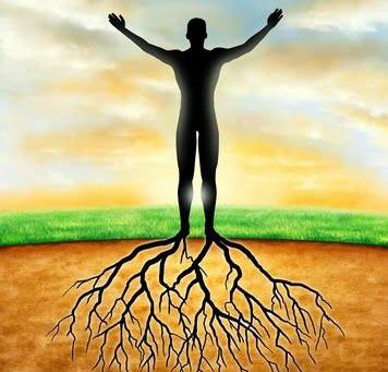 Volviendo a las raíces, reconectándo-me al presente