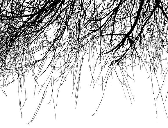 sketch1549655487307_edited.jpg