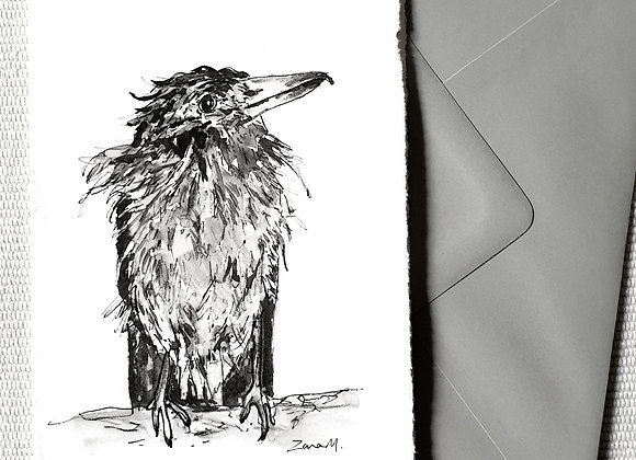 Scruffy Crow