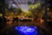 Festas, de dia ou a noite, sob as árvores, protegidas por uma cobertura ecológica transparente