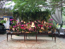 Mesa de doces Tuca Benetti.JPG