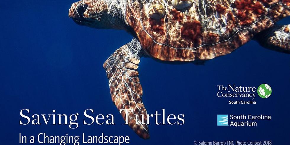 Webinar: Saving Sea Turtles in a Changing Landscape