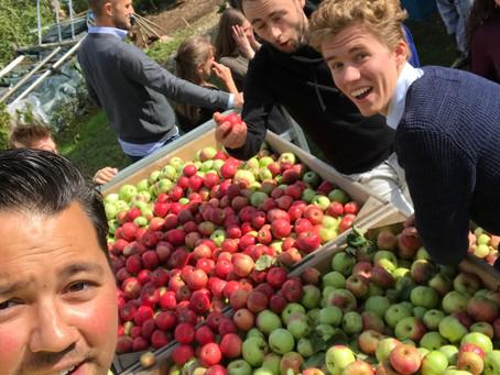 Mijn Appel- en perenpluk 2018