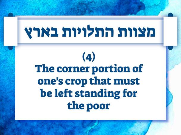 Israel Panoply.036.jpeg