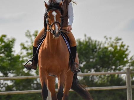 Equitation d'amour