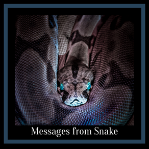 Messages & Medicine from Snake