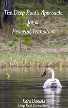 Peaceful Transitions-1.jpg
