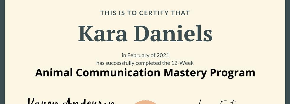 Karen Anderson Mastery Program