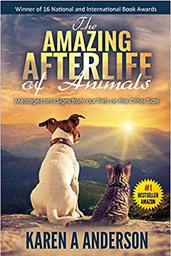 The Amazing Afterlife of Animals.jpg