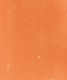 background (5).png