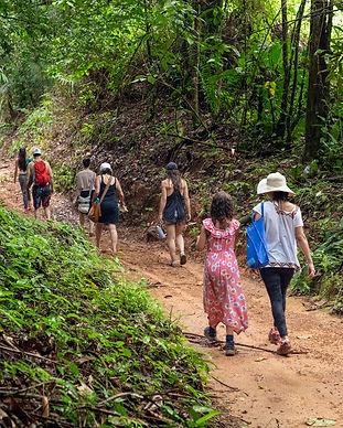 rainforest_excursion_20.jpg