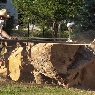 Using the Alaska Saw Mill on the Massive White Oak