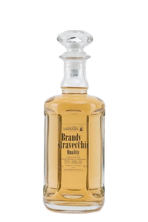 Brandy Stravecchio