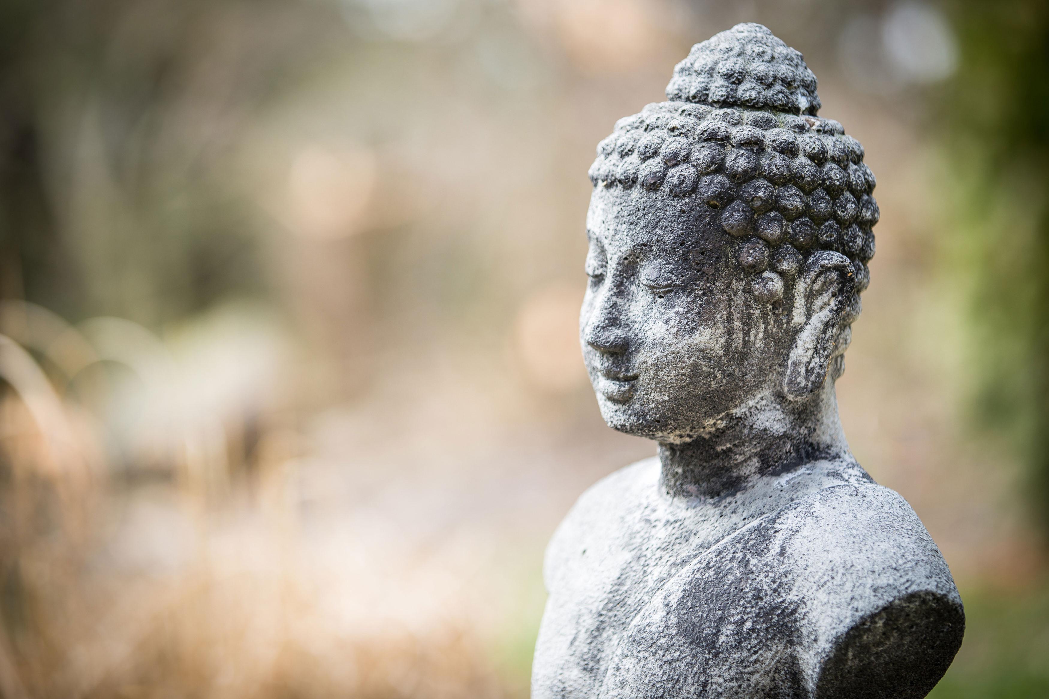 Yin & Kundalini Yoga