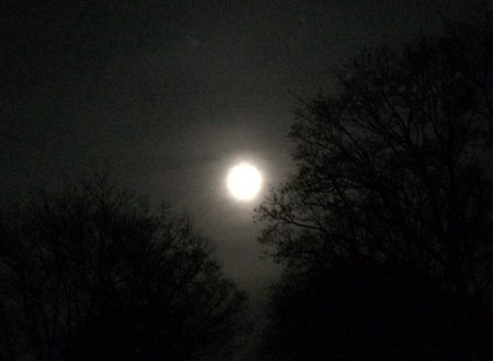 The Winner Of My SuperMoon Contest is...