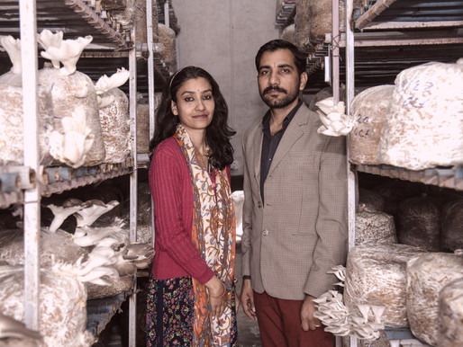 The Mushrooming of A Cause: PREETI RATHORE & MAANVEER SHEKHAWAT on Organic Farming