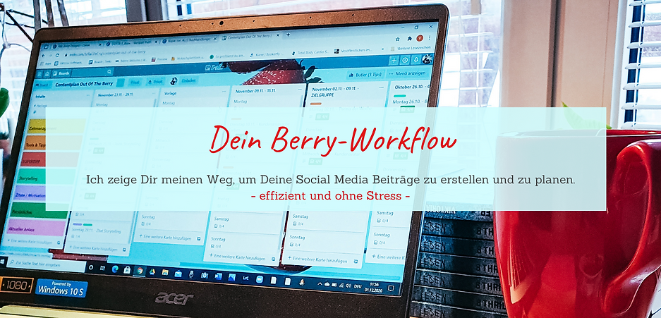 BerryWorkflow_WebsiteBanner_2.png