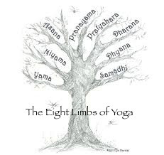 Yoga and the Natural World