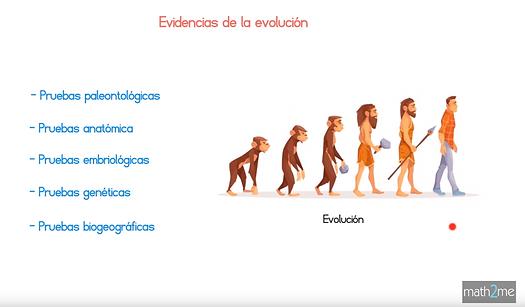 captura_biologia_website.png
