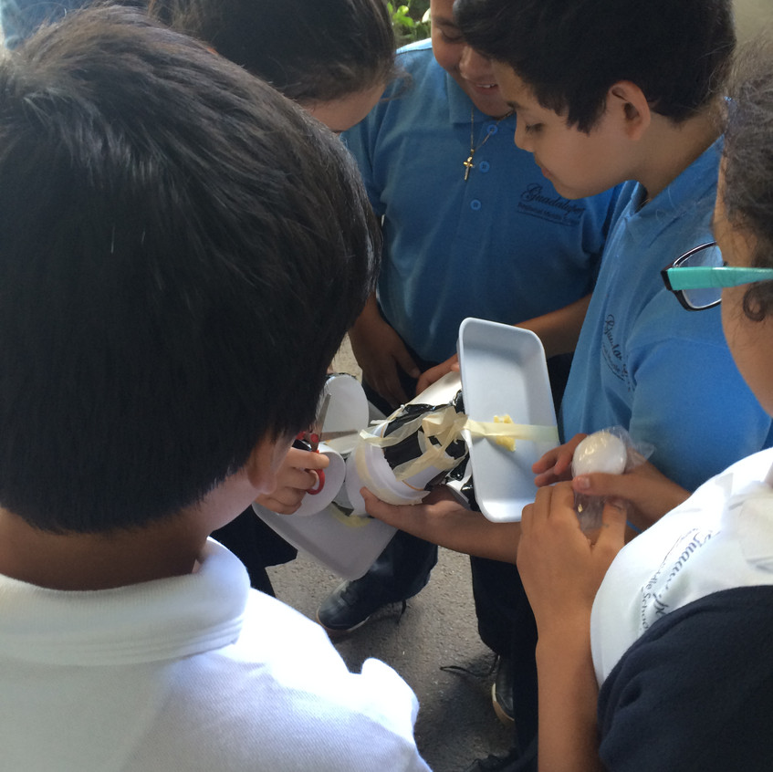 Students See If Egg is Broken