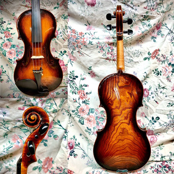 Catalpa Fiddle