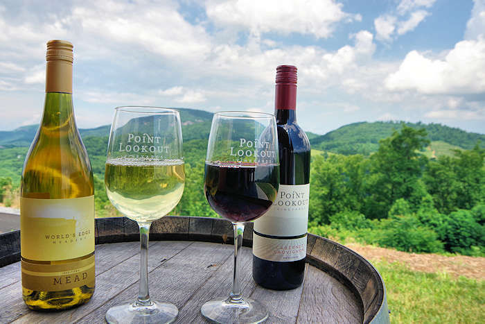 Beautiful WNC Winery Tour