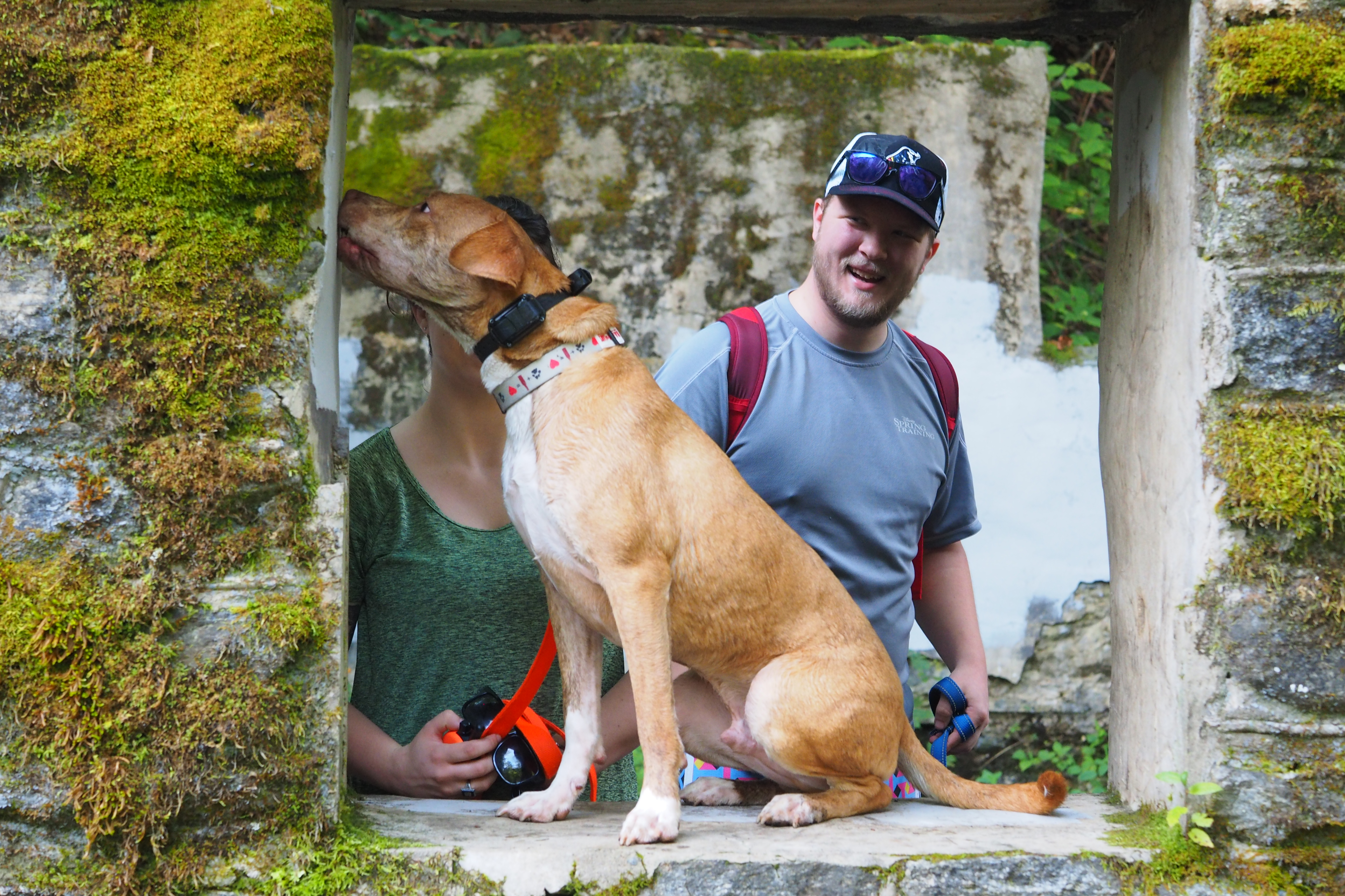 Dog Friendly Hikes