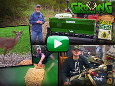 Growing Deer TV!