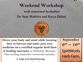Herbal Medicine Making Retreat Sept 6th
