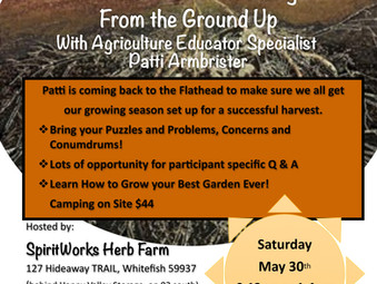 Garden Problem Solving with Patti Armbrister - Sat. May 30th