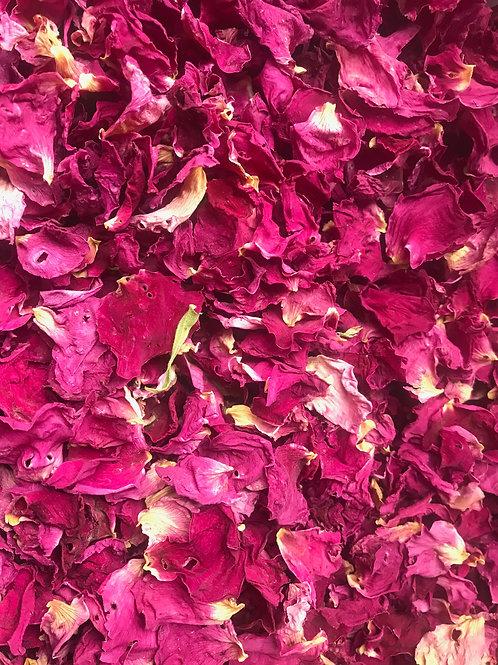 Rose Petals - Rosa rugosa