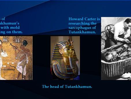 Tutankhamen's Curse - Kaya C.