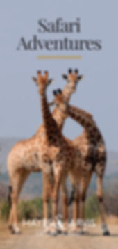 Hayes & Jarvis destination booklet - Safari