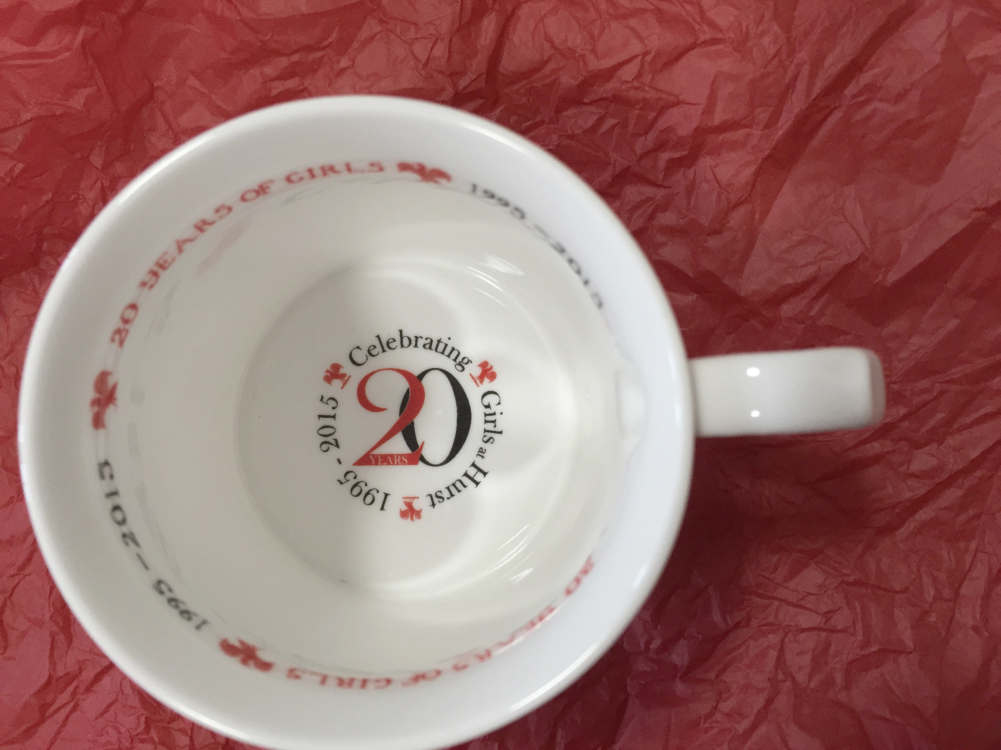 20 Years of girls mug inside