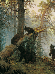 8.  There are bears (and wolves and tigers) in the Russian forests!